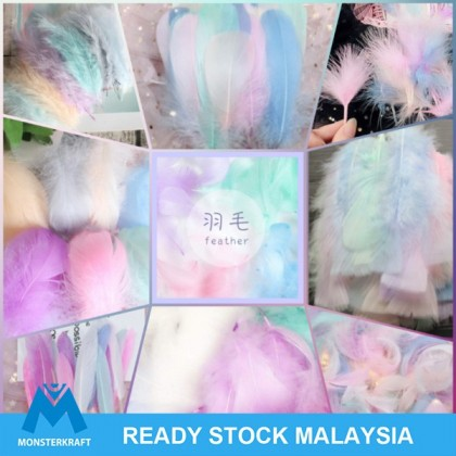Feathers Feather Pastel Colors Bulu Ayam Craft Material