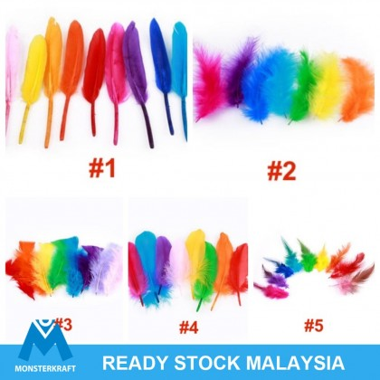 Feathers For Dreamcatcher DIY and Crafts, Assorted Colors, Natural Feather