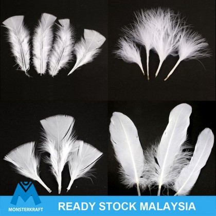 Feather White Feathers for Deamcatcher White Series Bulu Ayam Putih