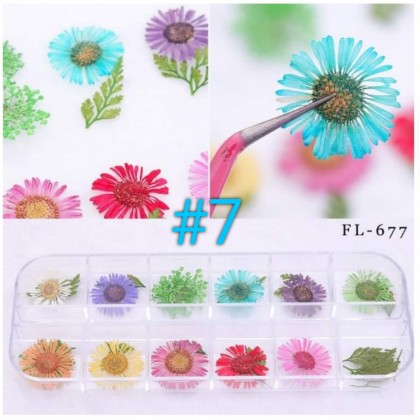 Mixed Natural Dried Flowers for Resin Craft, Nail Art